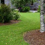 EMG Garden_TB-Baum-Backes-vkl